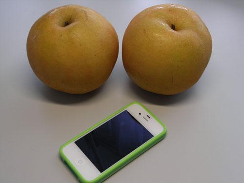 梨!大きい!!